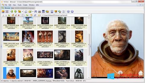 截图 XnView Windows 8.1