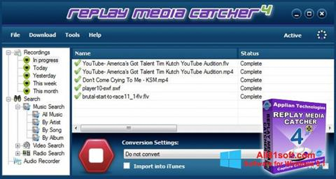 截图 Replay Media Catcher Windows 8.1