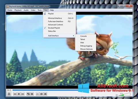 截图 VLC Media Player Windows 8.1