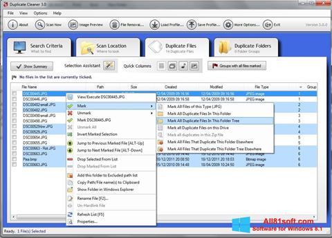 截图 Duplicate Cleaner Windows 8.1