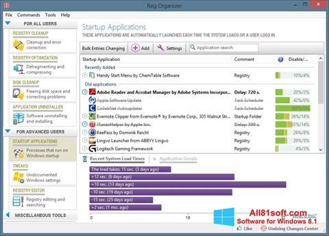 截图 Reg Organizer Windows 8.1